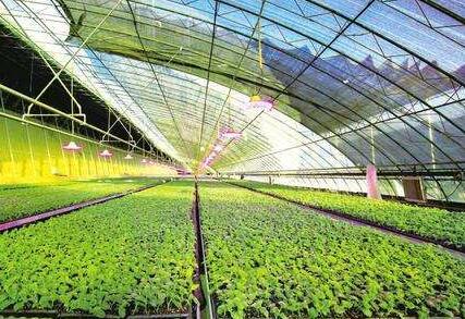 两部门印发数字农业农村发展规划:建设天空地一体化观测网络
