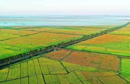 江门于近期成立自然资源统筹管理委员会